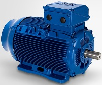 Электродвигатель Weg W22